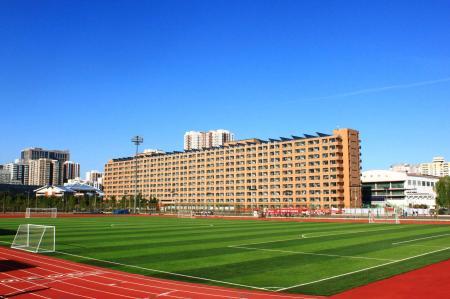 绿色的人造草坪足球场